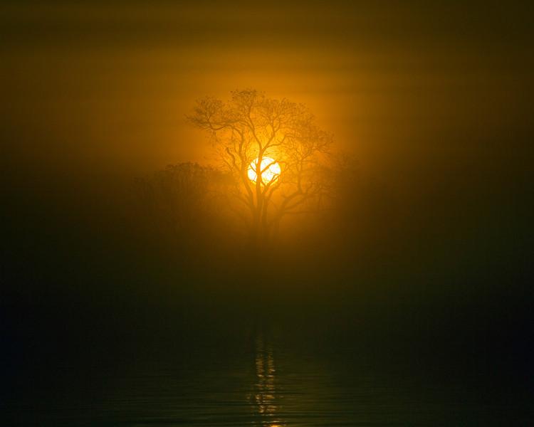 Delicate colors of Sunrise on the lower Mokelumne River at Sunrise in the Sacramento River Delta region, near Isleton, CA. Dec 3, 2012