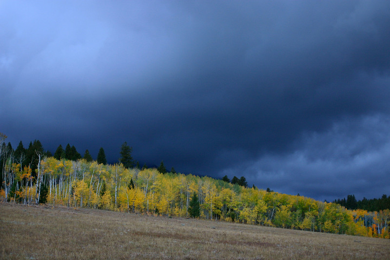 Fall colors against a storm sky next to RedRock RV Park, Island Park, Idaho. Sep 2007
