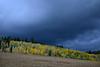Fall colors against a storm sky next to RedRock RV Park, Island Park, Idaho. Sep 2007