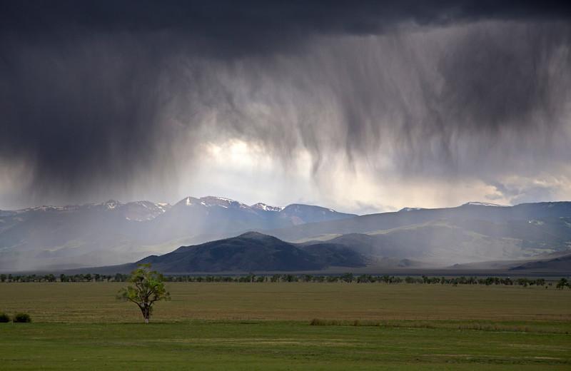 Rain (Verga) over Madison River Valley, Montana