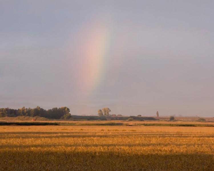 Rainbow like apparation in the sky near Isleton, CA (over the Sacramento Delta).