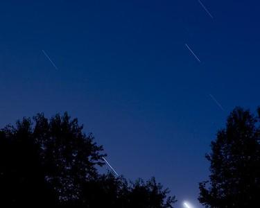 Nature_Star Trails_Rob Shellhamer