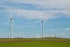 Windmills, Rio Vista, CA