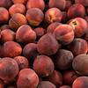 Peaches on display at Casa de Fruta, near Hollister, CA.