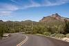 Winding road in Organ Pipe Cactus National Monument, Arizona.