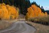 South Centennial Road in Fall, MT