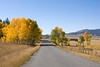 Looking West on Red Rock Road in Island Park, ID on Sep 30, 2008. The Fall colors are at their peak here.