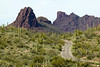 Ajo Mountain Loop Road in Organ Pipe Cactus National Monument, Arizona. Sep 26, 2009
