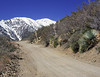 Sheep Canyon 4WD road view of snow capped mountains near Lytle Creek, CA, Mar 23, 2008