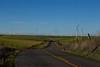 Rio Vista, CA wind turbines and road. Dec 18, 2012
