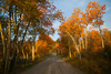Red Rock road near Henry's Lake in Idaho in the early morning showing fall colors. Sep 28, 2012