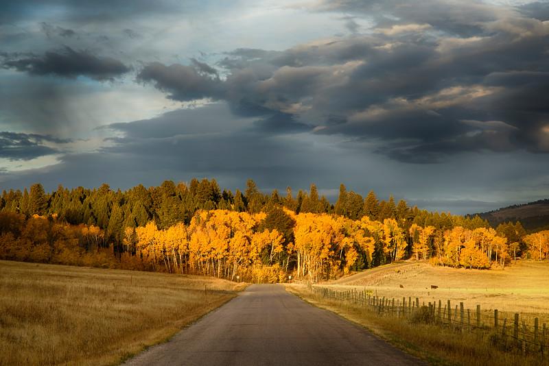 Red Rock Road, Island Park, Idaho in fall
