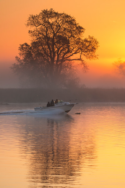 SunriseTreeRiverBoat_169033