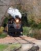 Felton, California steam train through the Redwoods.