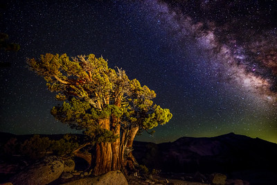 Milky Way over Yosemite