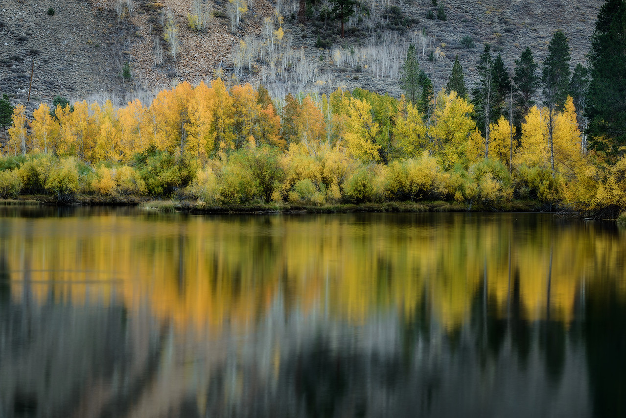 Fall Reflected
