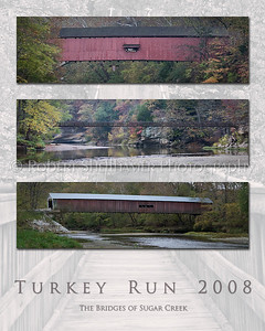 2008 Turkey Run Poster 2