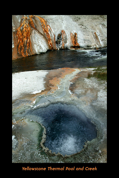 Creekside Thermal pool in Yellowstone (near Old Faithful).