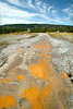 This is bacterial mats in the flow from Grand Geyser in Yellowstone National Park. Sep 13, 2009 Wyoming