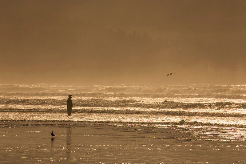 Man on Beach, fog
