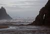 California Seagulls flushing along the beach near Proposal Rock, Neskowin, Oregon. Oct 20, 2012.