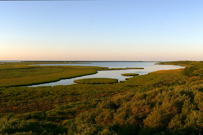 Mustang Lake in Aransas National Wildlife Refuge, along the Gulf Coast of Texas. Home of the Whooping Crane. At Sunrise, looking East. April 2007