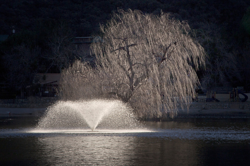 Sunlight tree and fountain after sunrise at Mountain Lakes RV Resort. California Jan 2013