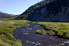 Gallatin River, in far western Yellowstone National Park. July 6th, 2012.