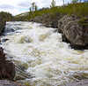 Firehole River rapids in Yellowstone National Park, May 2011.