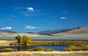 Shambow Pond