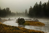 Fog covered Madison River, Yellowstone National Park, Sep 2012. Wyoming.