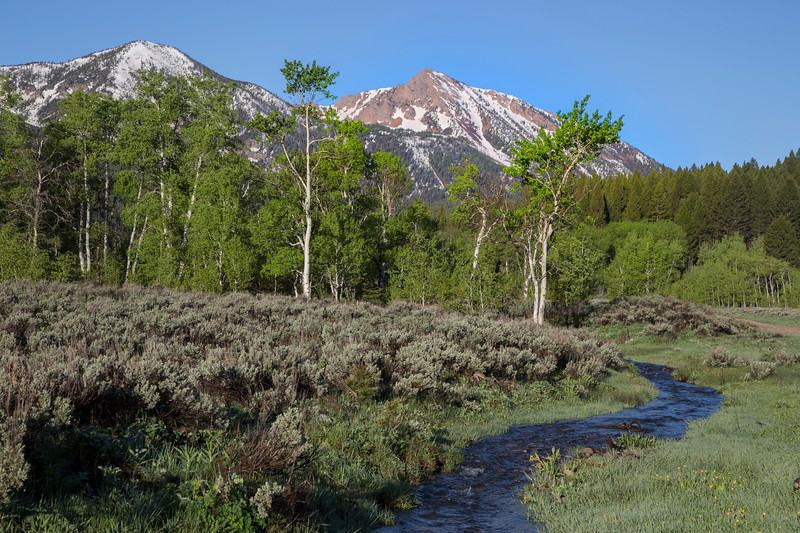 Mt Nemesis and Duck Creek, from Red Rock Road, ID