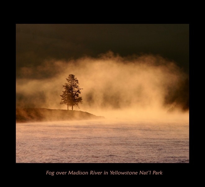Fog often forms above the river, especially in the early morning, like here,  when the outside temperature is cold. The river is warm due to the geysers and thermal pools that drain into it. Yellowstone's Madison River, September, 2007.