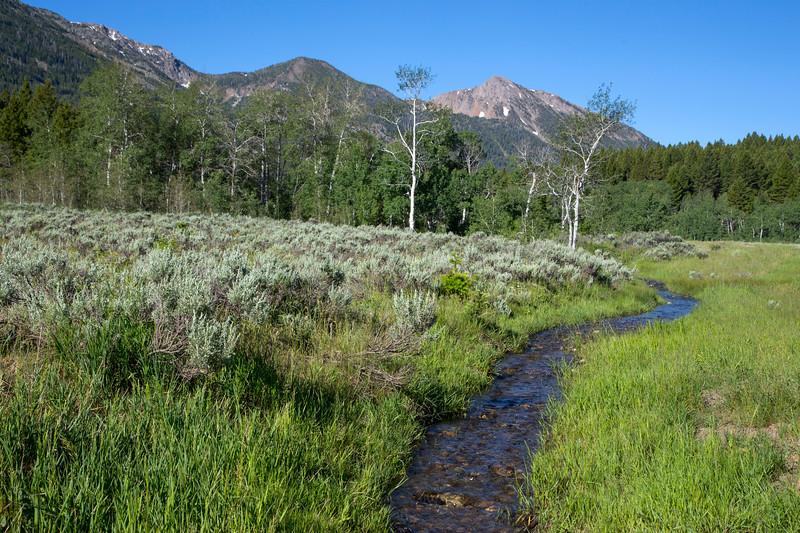 Duck Creek and Mt. Nemesis, ID