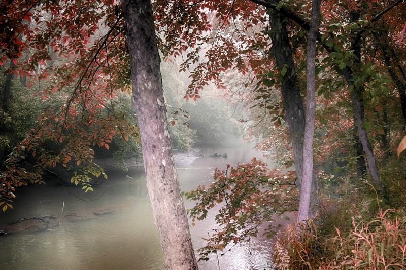 North Carolina creek
