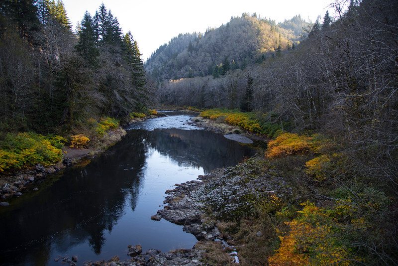 Nehalem River in fall