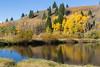 Pond in Idaho