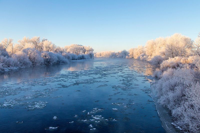 Henry's Fork of the Snake River and Frosted Trees