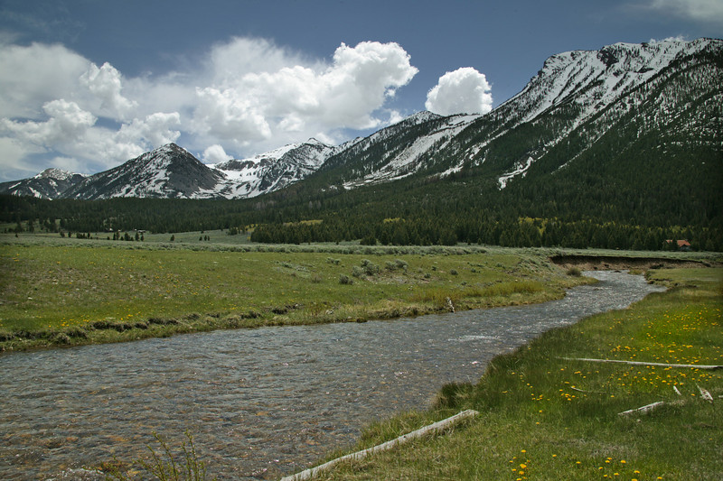Hell Roaring Creek in Montana with Centennial Mountains in the background.