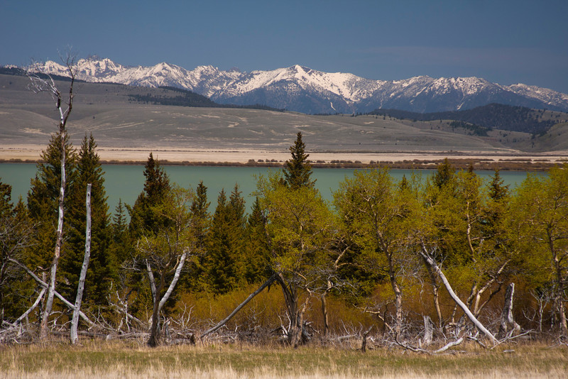 Madison range and Upper Red Rock Lake. May 14, 2012