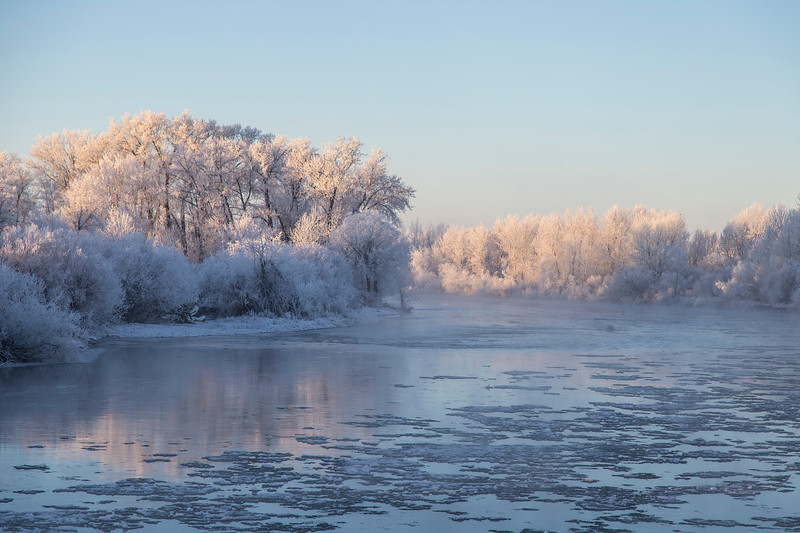 Frosted Trees and Henry's Fork of the Snake River