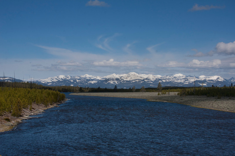 Madison River view from western part of Yellowstone. May 17, 2011