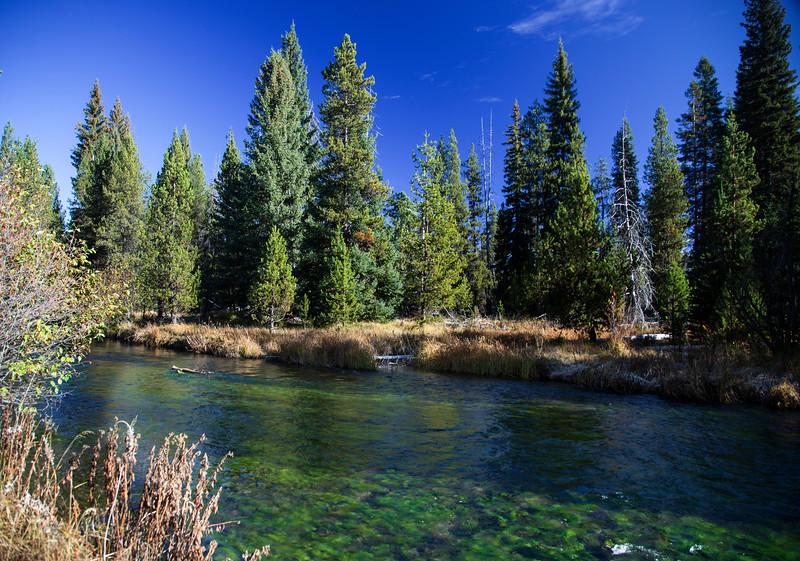 Deschutes River and Algae