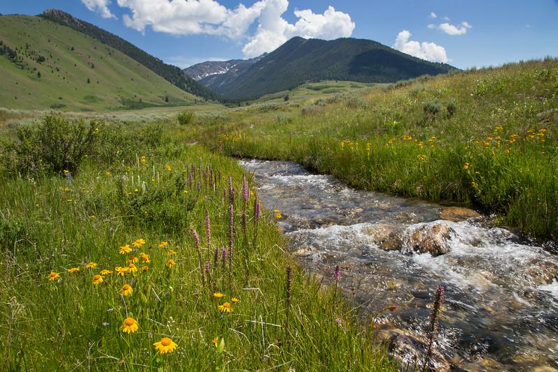 Mile Creek, MT