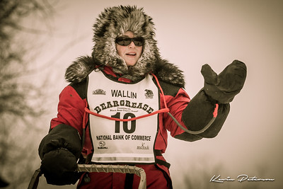 John Beargrease Sled Dog Marathon 2014