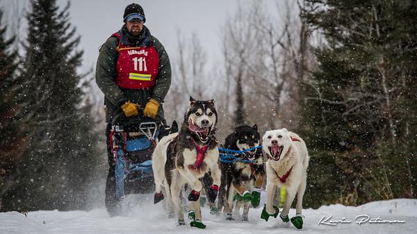 John Beargrease Sled Dog Marathon 2015