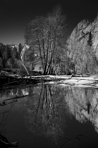 Sticks and Stones<br /> Yosemite, CA