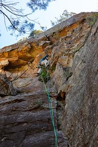 Warumbucles Climber 0329