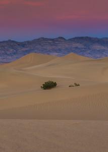 Sunset over Mesquite Dunes