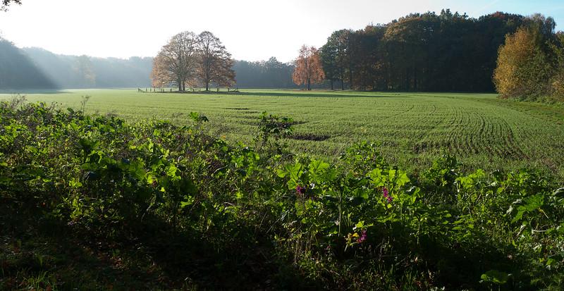 landgoed Landfort | Megchelen